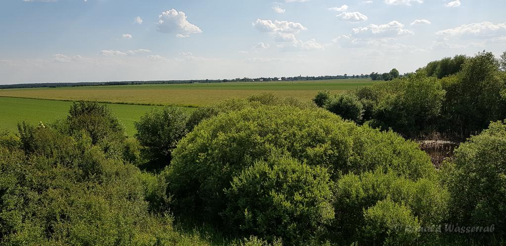 Landschaft vom Beobachtungsturm Buckow aus gesehen