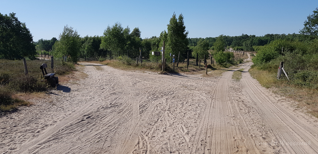 Landschaft in der Döberitzer Heide