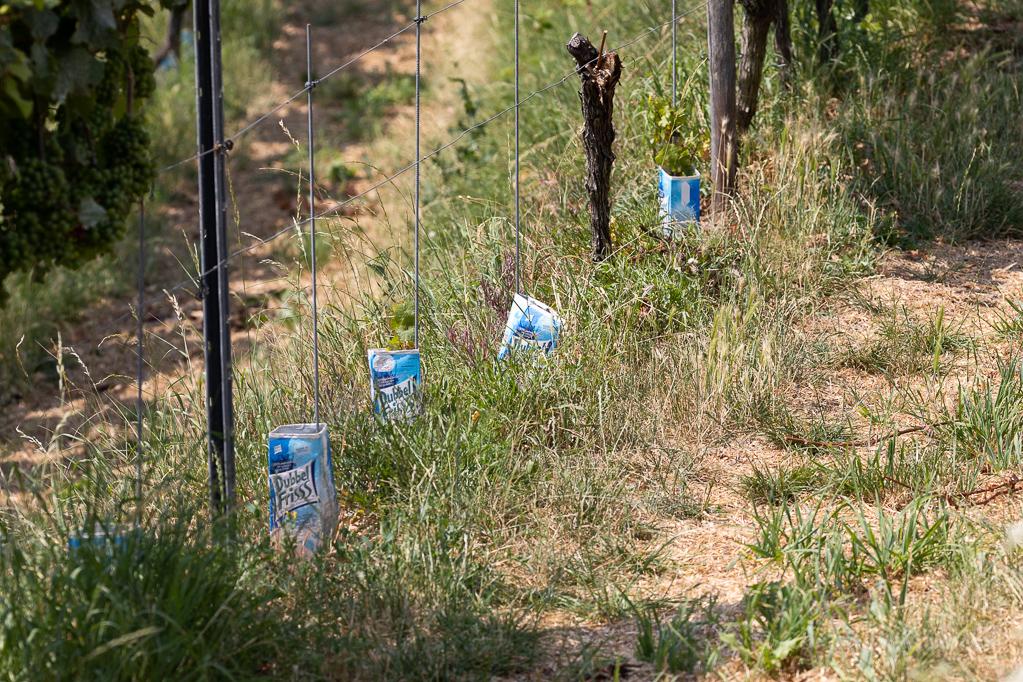 Für die besondere Note im Wein?