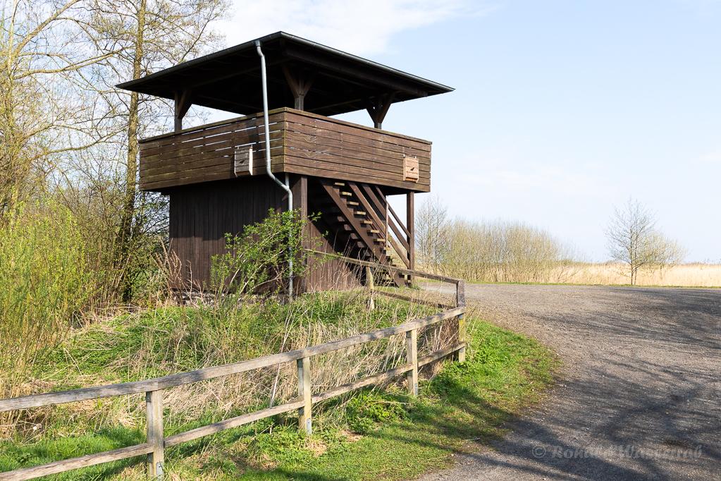 Beobachtungsturm an der Duemmer im Ochsenmoor