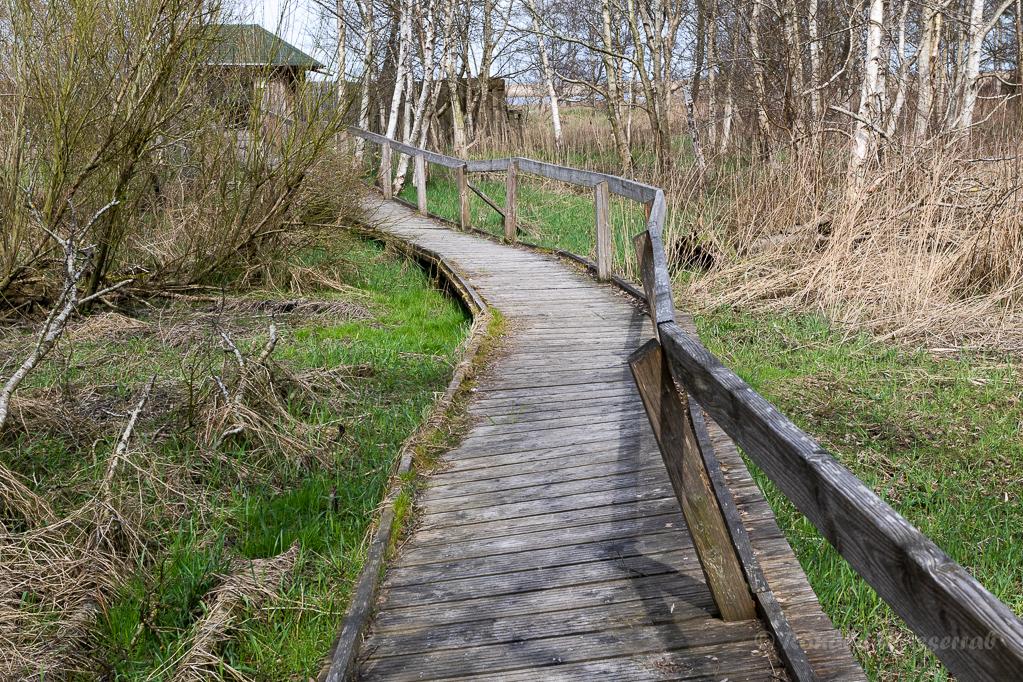 Weg zur Hütte im Schwimmenden Moor