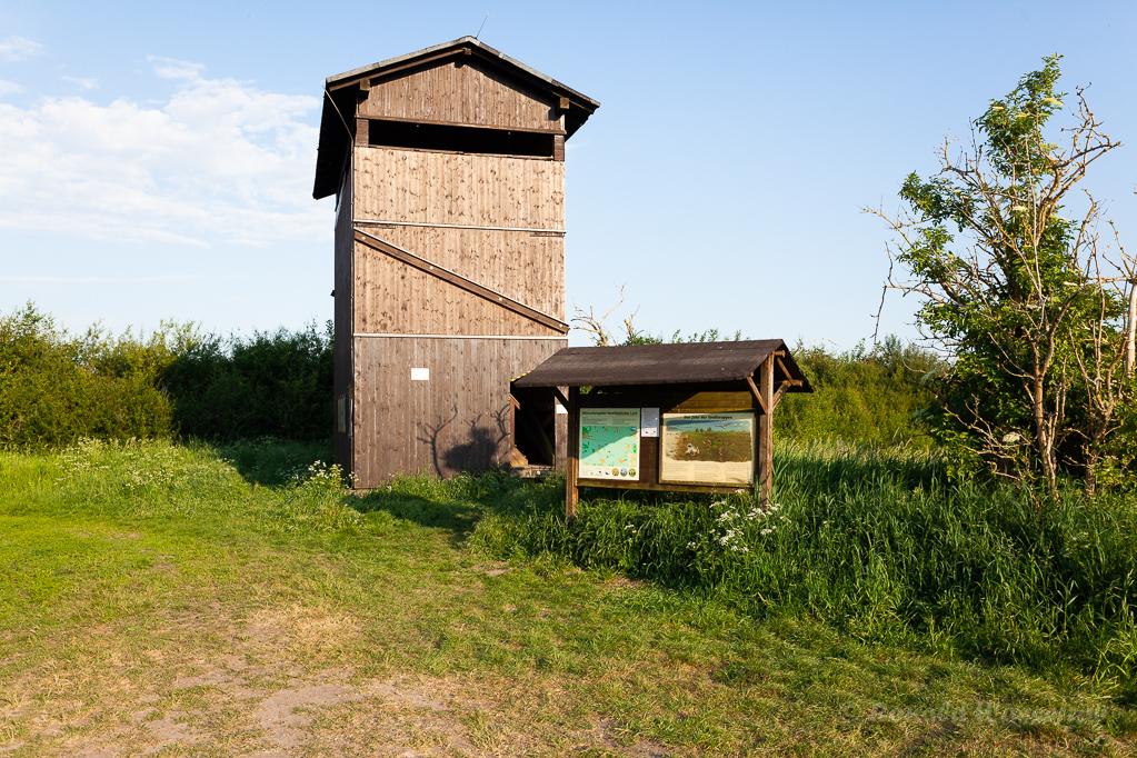 Beobachtungsturm Buckow