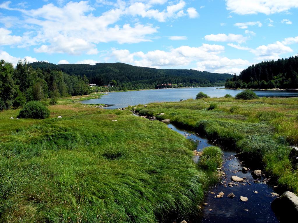 Zufluss zum Schluchsee (Foto: Heinz-Dieter Hannes)