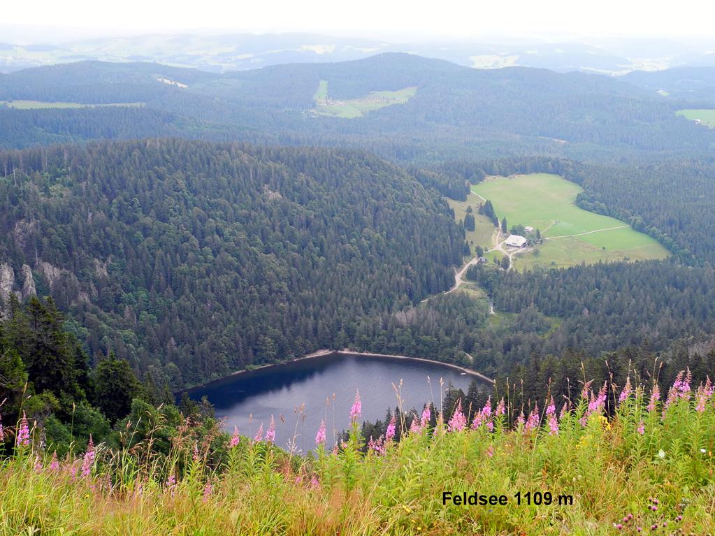 Feldsee (Foto: Heinz-Dieter Hannes)