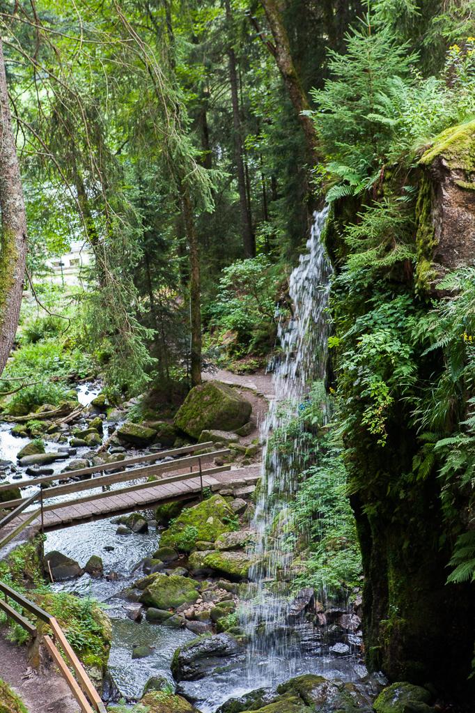 Alb-Wasserfall in Menzenschwand