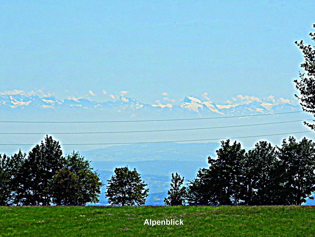 Alpensicht in Höchenschwand (Foto: Heinz-Dieter Hannes)