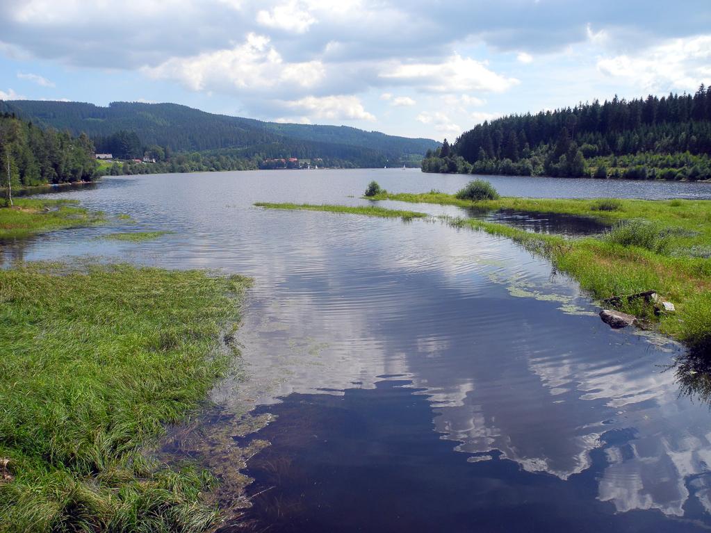 Schluchsee (Foto: Heinz-Dieter Hannes)