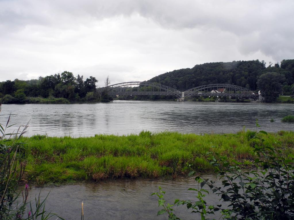 Aare-Mündung bei Koblenz (Foto: Heinz-Dieter Hannes)