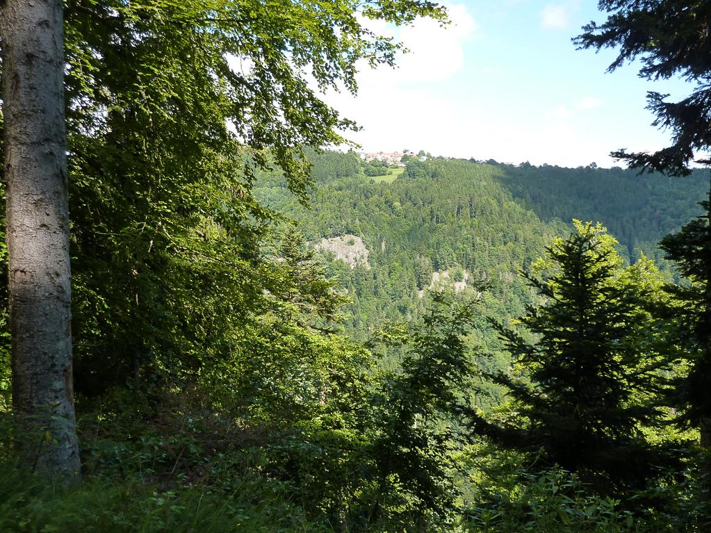 Felsenweg in Höchenschwand (Foto: Gérard Perrin)