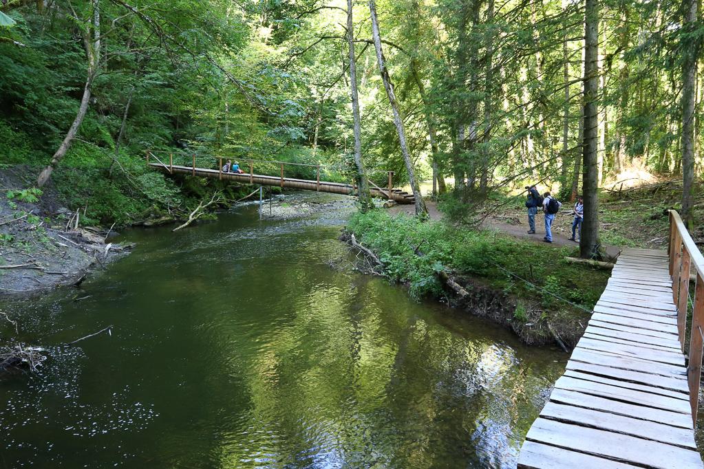 Erdrutsch-Behelfsbrücke