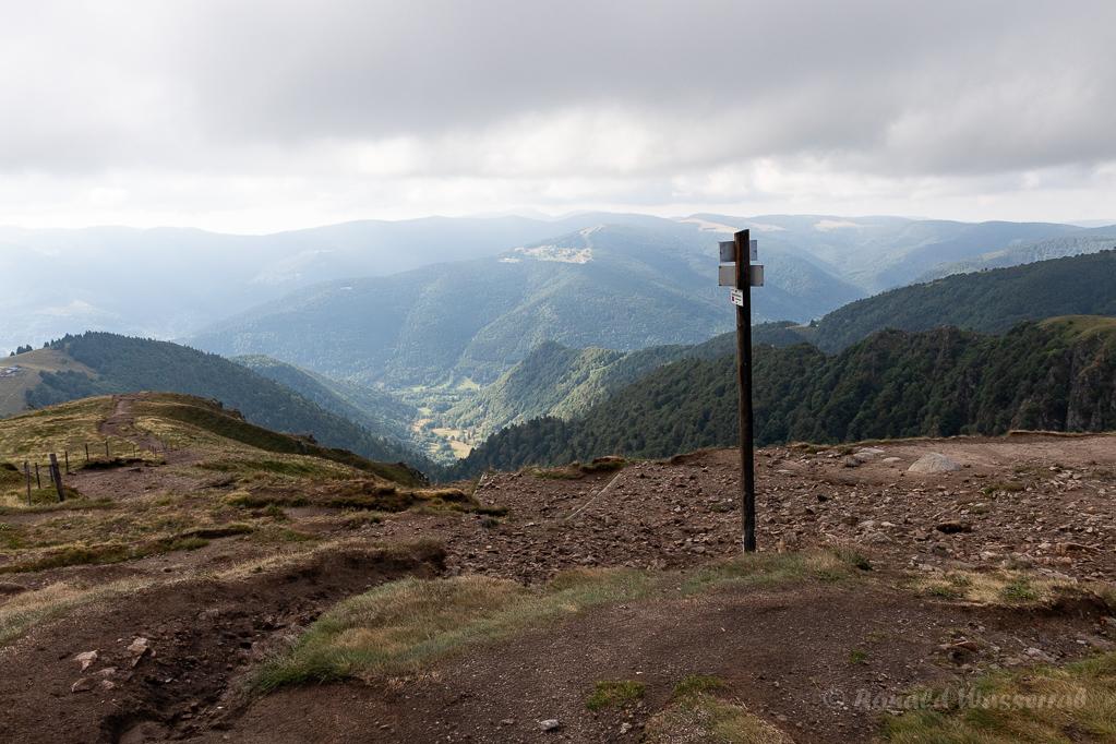 Am Gipfel des Hohnecks