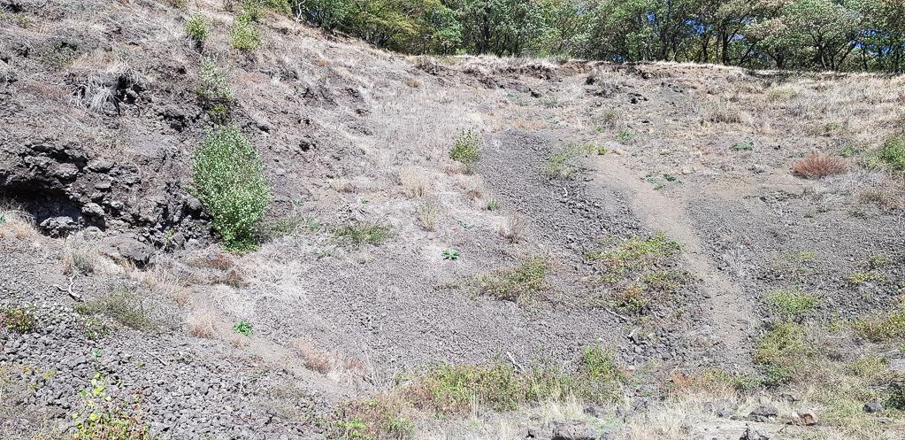 Lava-Geröllwandwand eines Vulkans in der Vulkaneifel