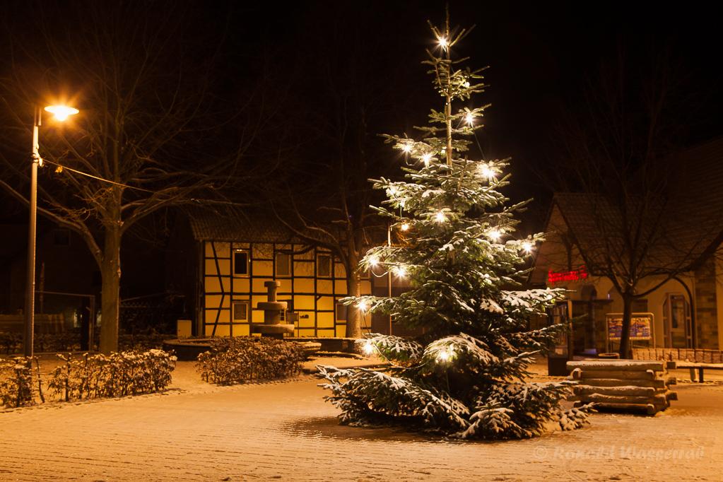 Weihnachtliche Impressionen - Weihnachtsbaum in Gey