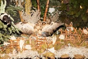 Fuchs und Greif in der Landschaftskrippe Höfen