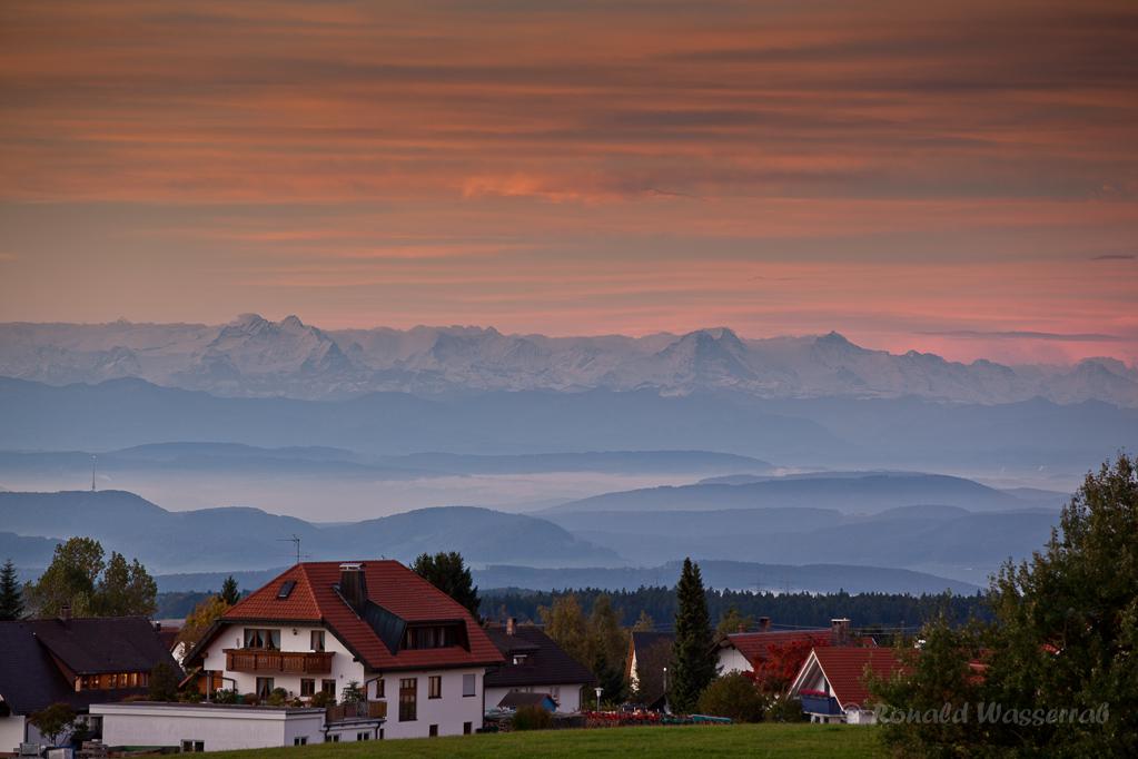 Alpenkette mit Eiger, Mönch, Jungfrau und Nebel im Rheintal von Höchenschwand aus