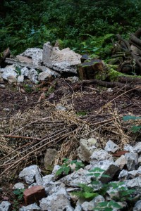 Bauschutt am Orchideenwuchsort im Tiefenhäuserner Moor