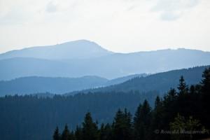 Wandern überm Himmelreich - Belchen vom Feldberg aus