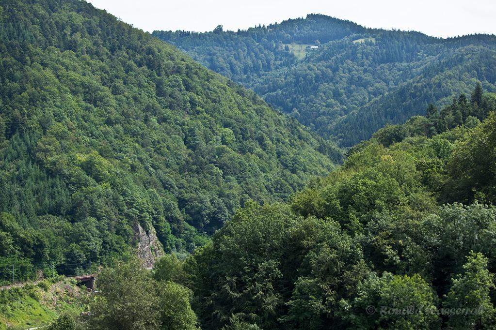 Wandern überm Himmelreich - Blick Richtung Hirschsprung auf die Bahnstrecke vom Heuberg aus