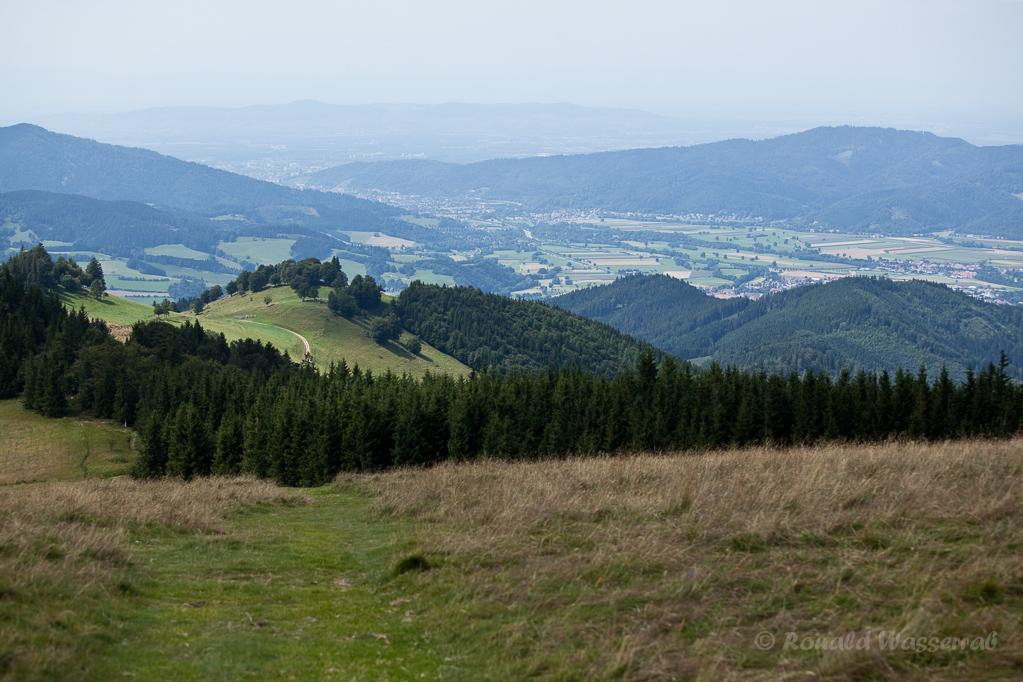 Wandern überm Himmelreich - Blick auf Freiburg und das Dreisamtal üer den Häusleberg vom Hinterwaldkopf