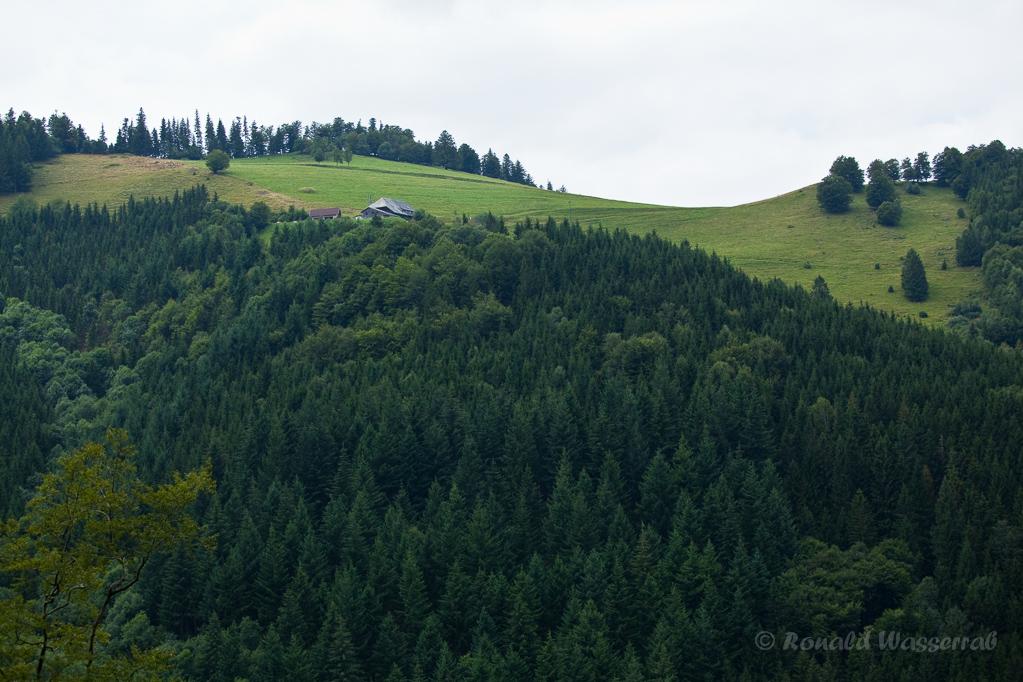 Wandern überm Himmelreich - Blick auf Höfener Hütte mit Häusleberg