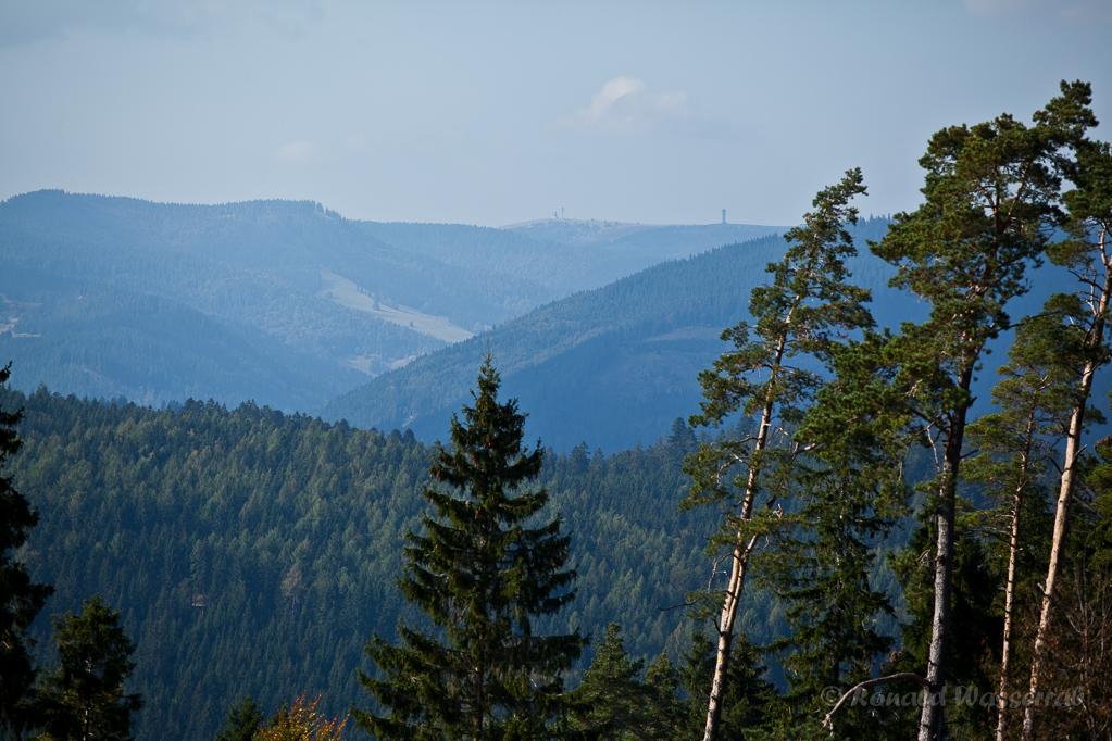 Blick auf Feldberg und Spießhorn von Höchenschwand aus
