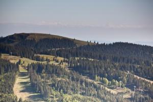 Wandern überm Himmelreich - Blick vom Feldberg Richtung Herzogenhorn und Alpen