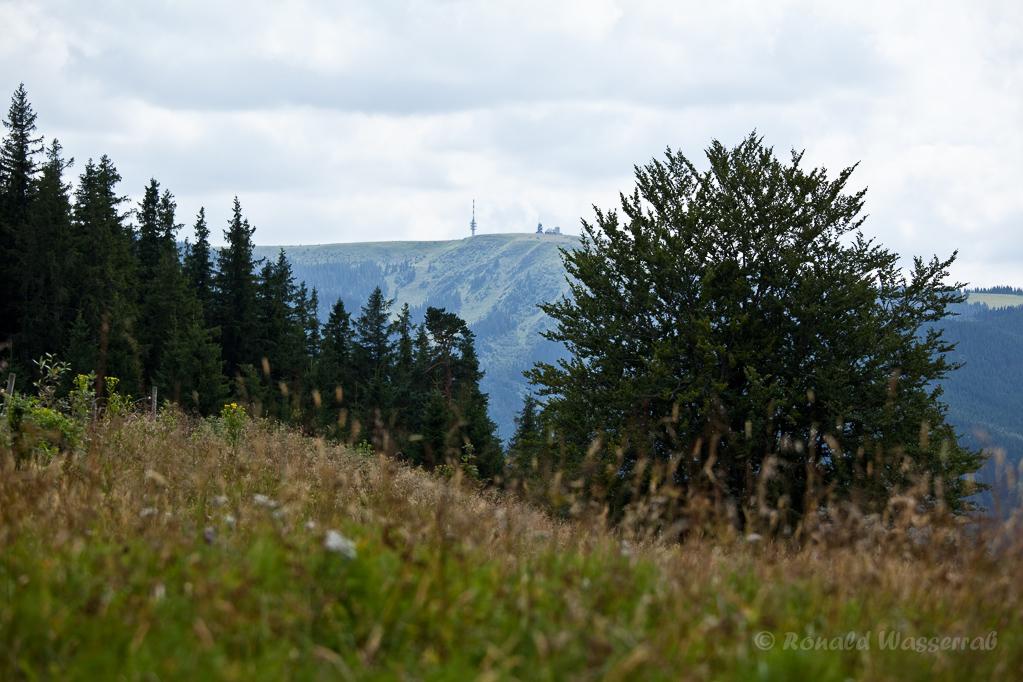 Wandern überm Himmelreich - Blick vom Hinterwaldkopf zum Feldberg