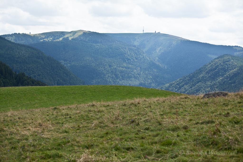 Wandern überm Himmelreich - Blick zum Feldberg vom Hinterwaldkopf