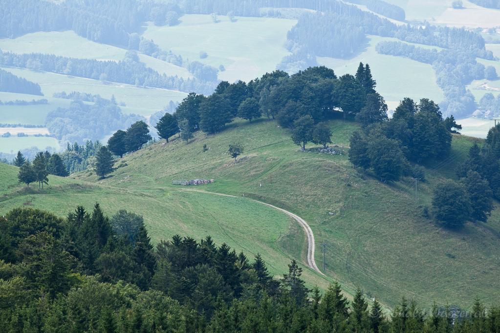 Wandern überm Himmelreich - Blick zum Häusleberg vom Hinterwaldkopf