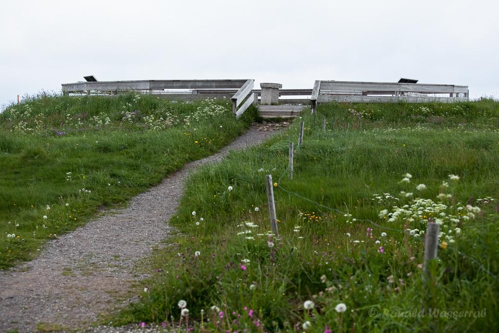 Wandern überm Himmelreich - Gipfelplateau des Feldbergs
