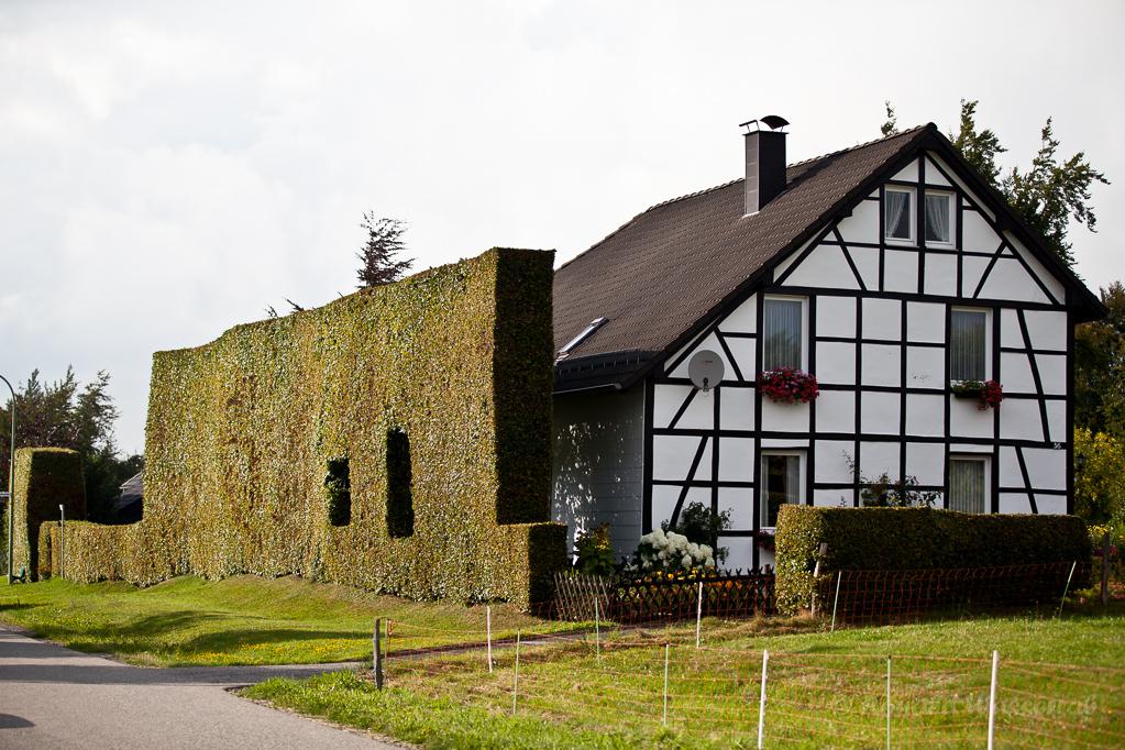 Heckenland - Fachwerkhaus mit Hecke in Eicherscheid