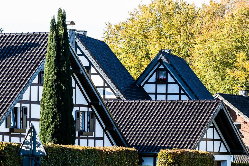 Moderne Fachwerkhäuser mit niedriger Hecke in Höfen