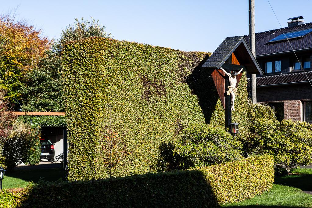 Heckenland - Wegkreuz mit Hecke in Höfen