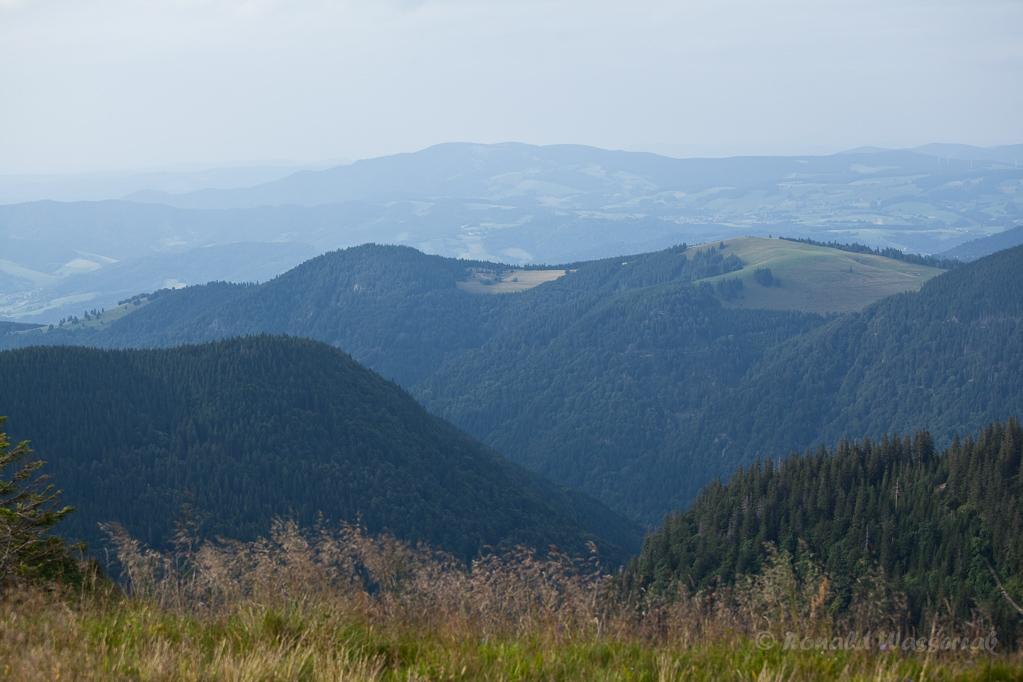 Wandern überm Himmelreich - Hinterwaldkopf Roteck und Zastlerloch vom Feldberg aus