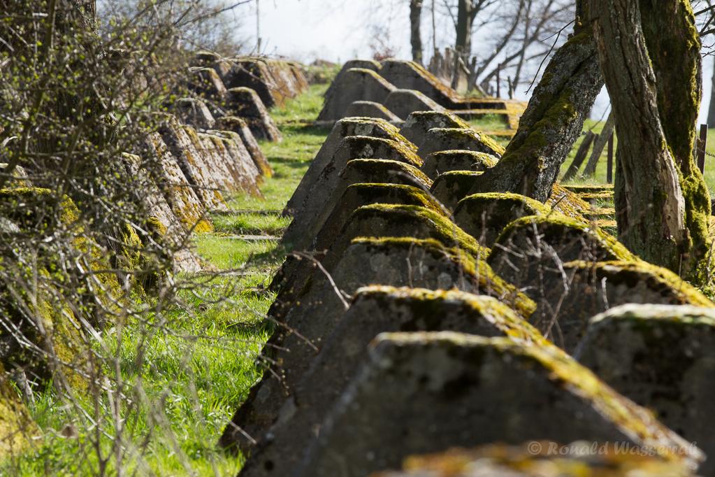 Westwall-Panzersperren bei Paustenbach