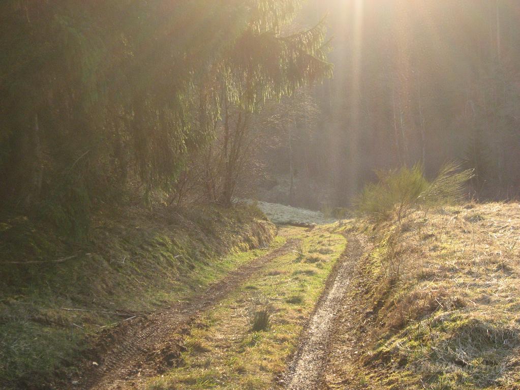 Weg in das Jansbachtal