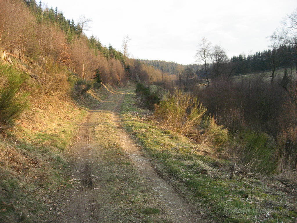 Weg am Jansbach