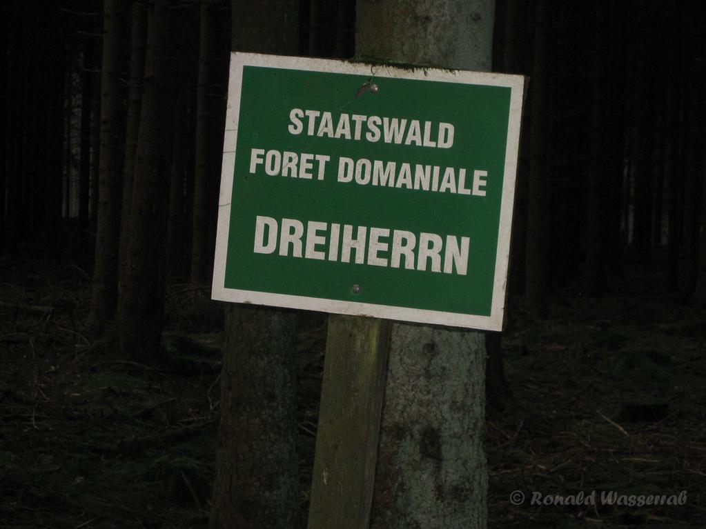 """Schild """"Staatswald Dreiherrn"""""""