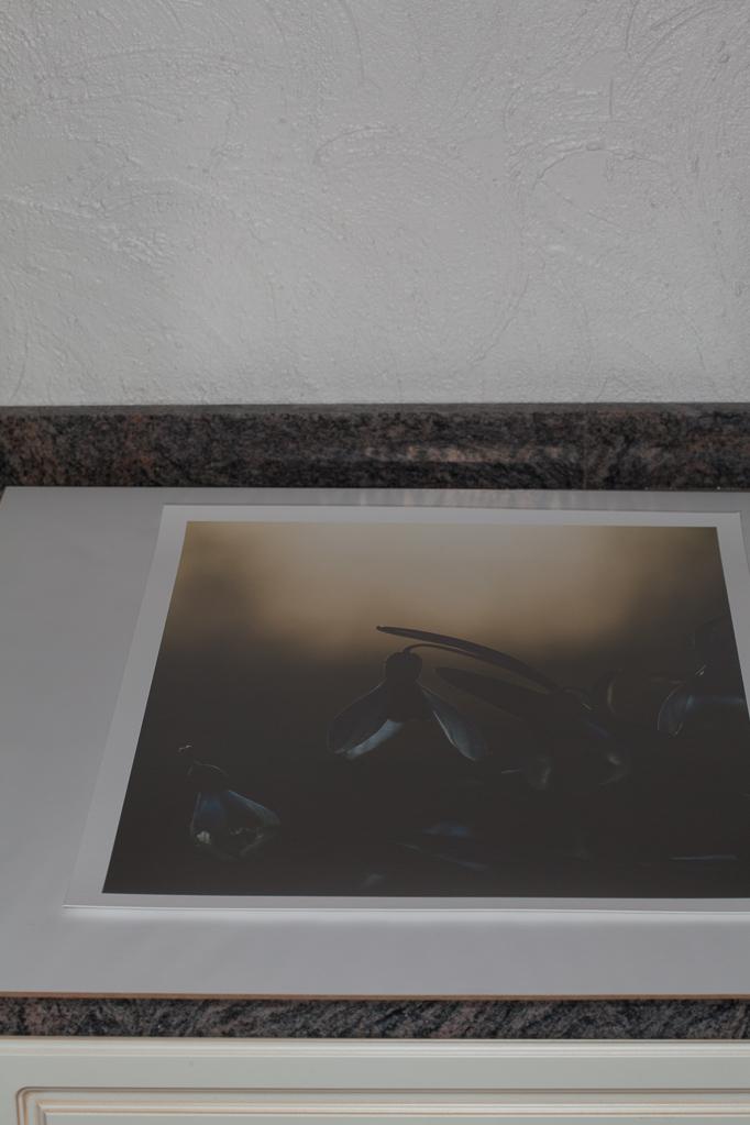 Das Foto wird auf die Rückwand mit dem Einlegepapier gelegt