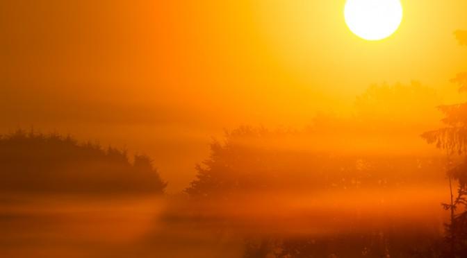 Nebelsonne am Kranzbruch