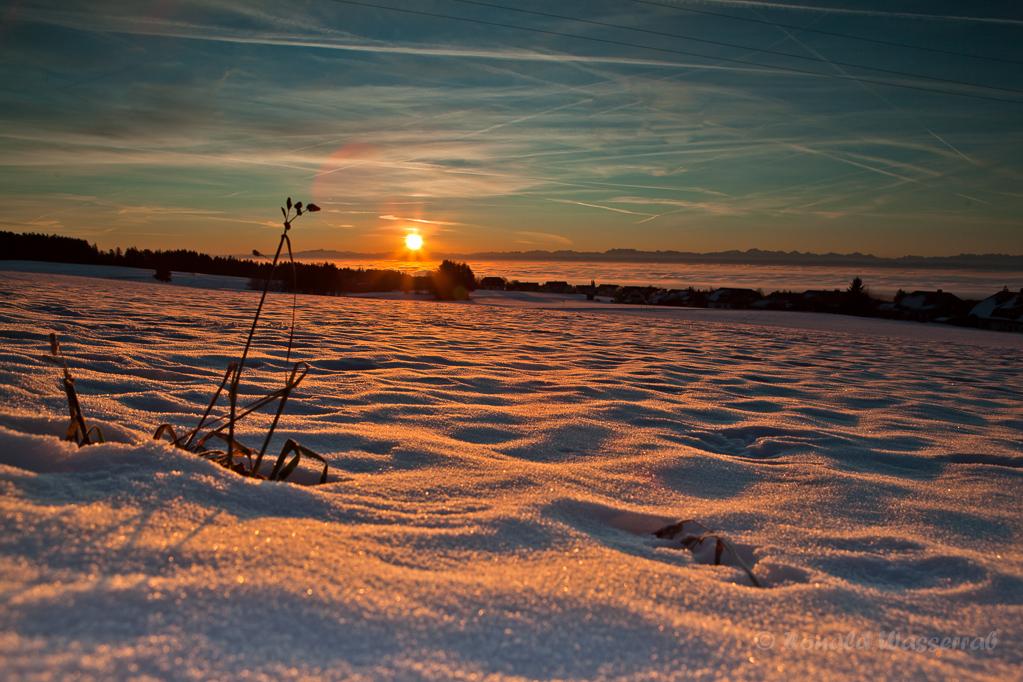 Sonnenaufgang im Schnee bei Höchenschwand