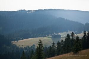 Wandern überm Himmelreich - St. Wilhelmer Hütte vom Feldberg aus