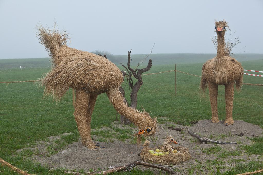 Strohskulpturen - Straussenvögel