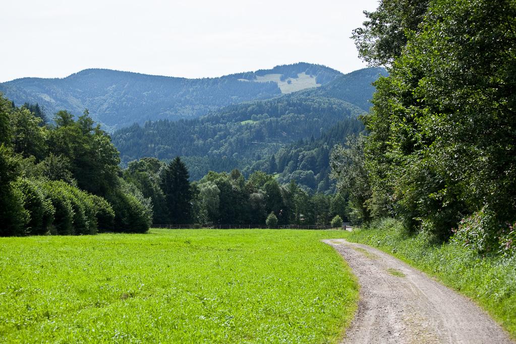 Wandern überm Himmelreich - Weg Richtung Hirschsprung bei Himmelreich