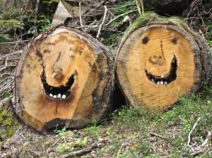 Wandern überm Himmelreich - Zwei lustige Gesellen an der Menzenschwander AlbAlb