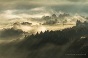 Sonnennebel über Nideggen-Hetzingen