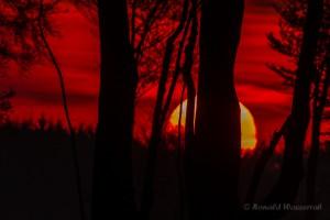 Sonnenaufgang am Hoscheit